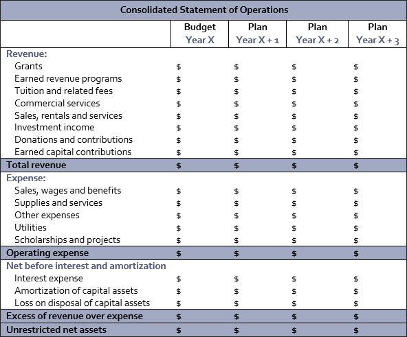 consolidated statement of operations table
